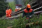Motorový vlak narazil v pátek 16. května ráno nedaleko Chrastic do spadlých stromů na trati Hanušovice – Staré Město.