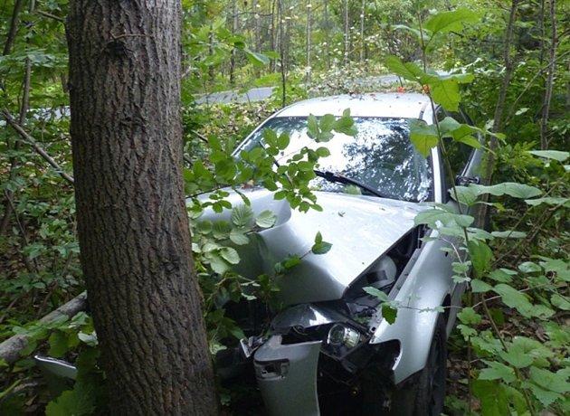 Řidič havaroval, když se vyhýbal přebíhající srně.