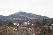 Následky kůrovcové kalamity - pohled na Lysý vrch u Zlatých Hor.