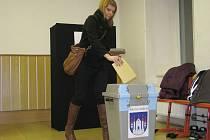 V Zábřehu proběhlo referendum ohledně záměru společnosti Wanemi.