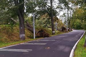 Následky vichřice v Jeseníku o prvním říjnovém víkendu 2020.
