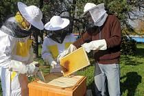 Obor včelař.