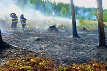 K požáru mýtiny lesa mezi Brníčkem a Dlouhomilovem vyjížděli ve čtvrtek 16. července odpoledne hasiči. Hořelo na ploše asi 150×100 metrů