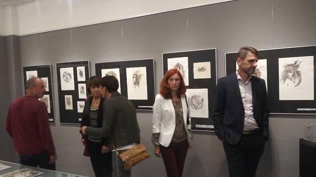 Vernisáž grafik Jany Kotschové snázvem Přijatá výzva