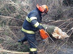 Vítr na Javornicku ve čtvrtek 2. března lámal stromy.