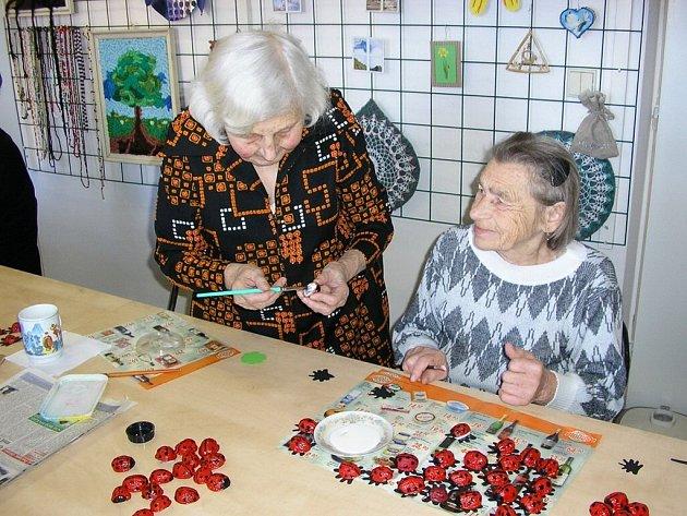 Výroba berušek v Domovince