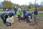 Sázení dubů v Doubravici