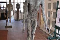 Hned při vstupu do průjezdu muzea vítá návštěvníky socha Kráčející jinoch.