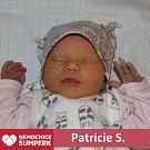 Patricie S., Vyšehorky
