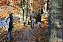Obnova se výrazně dotkne i Aleje nářků v jesenických Smetanových sadech
