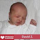 David Z., Sudkov