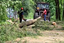 Odklízení následků vichřice v Dolní a Malé Moravě