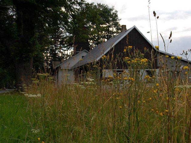 V ptačí rezervaci mohou osadníci Rejvízu kosit trávu poprvé až v polovině srpna.