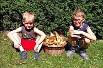 Plný košík hub našli v neděli v lesích kolem Bohdíkova malí houbaři Petřík a Michálek Pavelkovi.