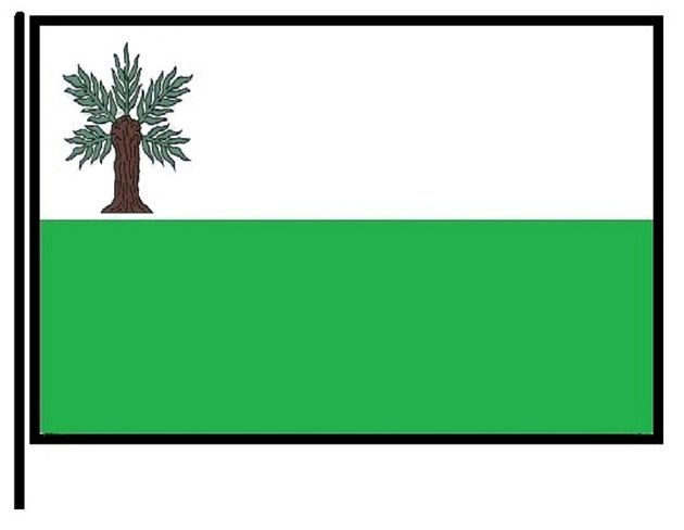Návrh nové vlajky města Vidnava.