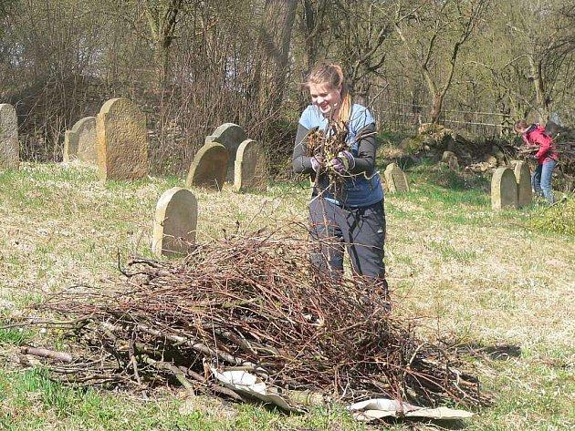 S úklidem židovského hřbitova v Lošticích přijeli pomoci studenti z Německa