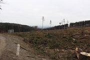Následky kůrovcové kalamity - pohled v první zatáčce pod Rejvízem směr Zlaté Hory.
