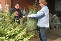 Stanislav Šilc (vlevo) prodává vánoční stromek. Největší zájem je o nejlevnější smrky.