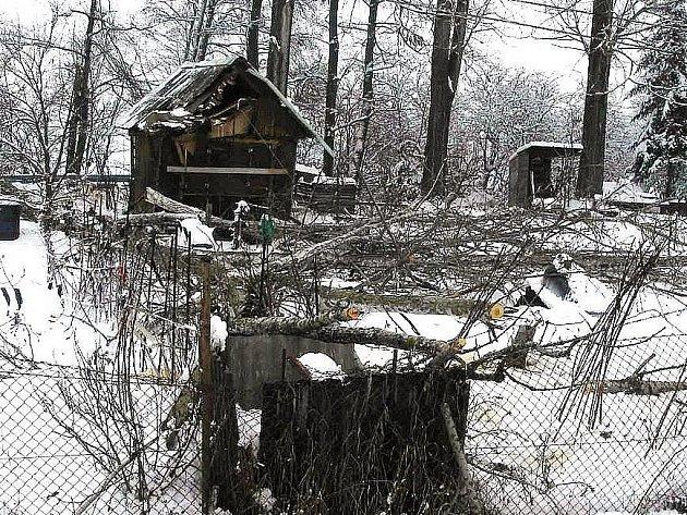 Místo činu v Třeštině, kde pád stromu poškodil sloup vysokého napětí