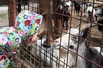 Návštěva olomoucké zoo