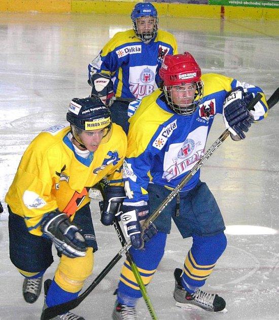 Radek Fischer (vlevo) zařídil v Přerově první gól Draků.