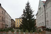 Vánoční strom v Šumperku.