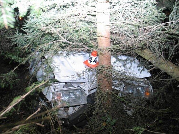 Náraz byl tak silný, že jeden strom auto přerazilo a druhý vyvrátilo.