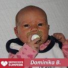 Dominika B., Petrov nad Desnou