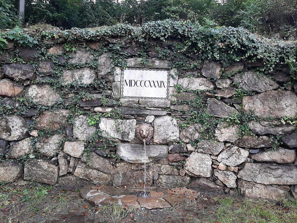 Chrlič Wesselényiho pramene má podobu hlavy lva.