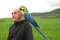 Zdeněk Krňávek ze Šumperku s jedním ze svých papoušků