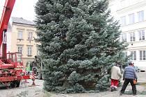 Instalace vánočního stromu na náměstí Míru v Šumperku.