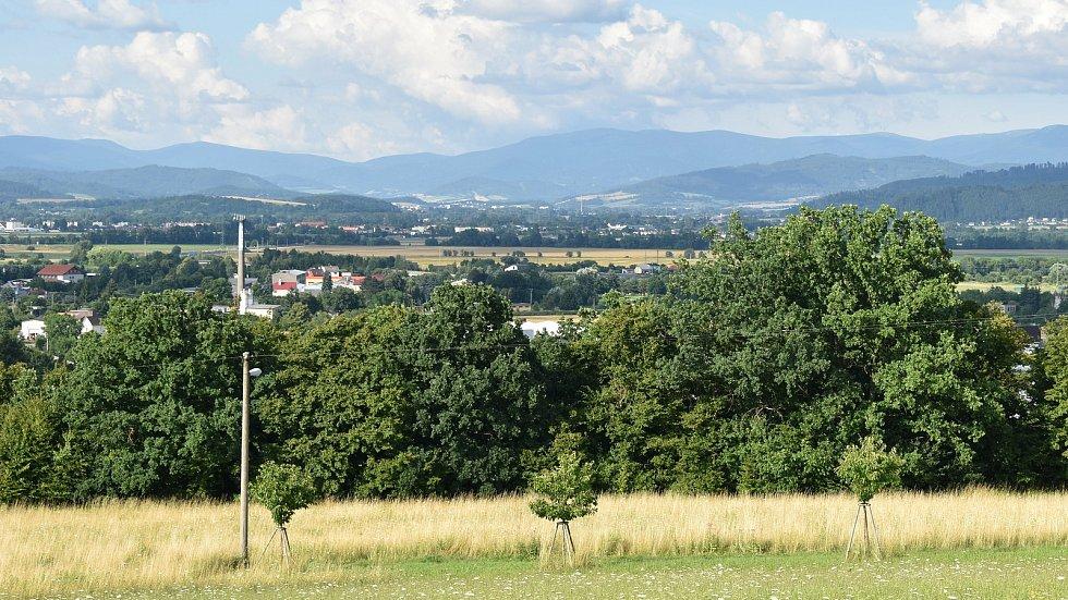 Pohled na Zábřeh z kopce Humenec.