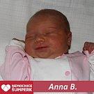 Anna B., Králíky