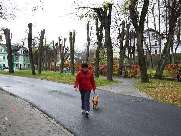 Parčík na Vodní ulici v Jeseníku.