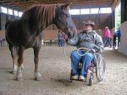 Deset let už funguje ve Vyšehorkách na Mohelnicku občanské sdružení Ryzáček, které nabízí především hiporehabilitaci.