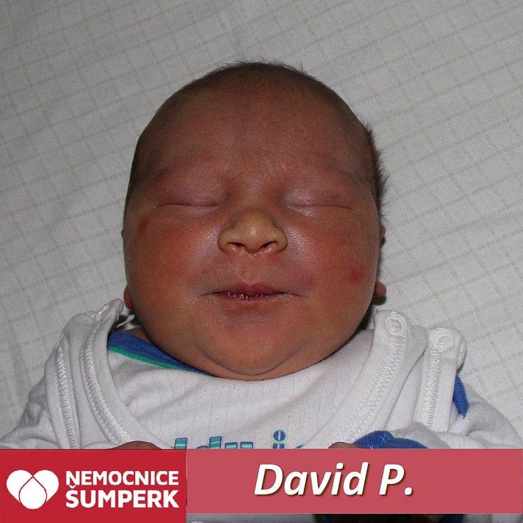 David P., Postřelmov