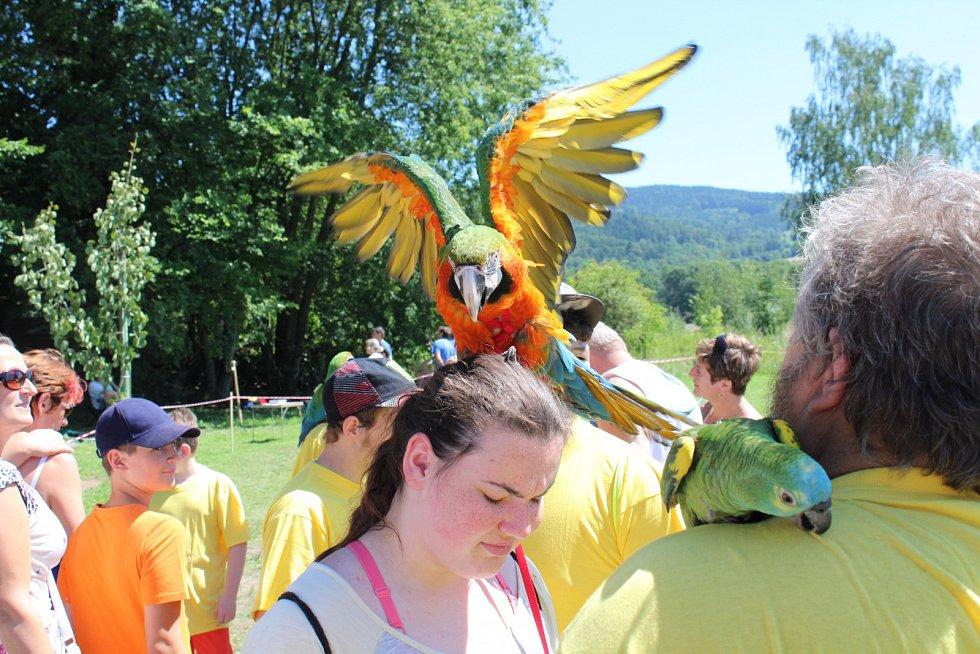 Papouščí den v kempu Krásné u Šumperku.