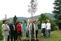 Jeřáb vysadili studenti oboru ekologie a životního prostředí na SOŠ v Šumperku