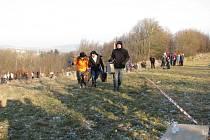 Welzlův běh s kufrem, leden 2014.