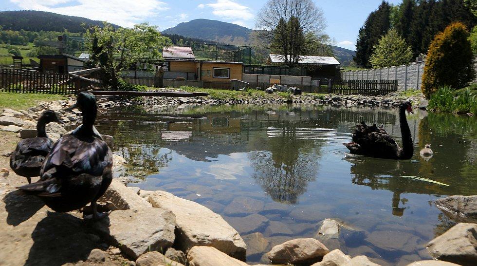 Fauna park Lipová lázně. 21. května 2020