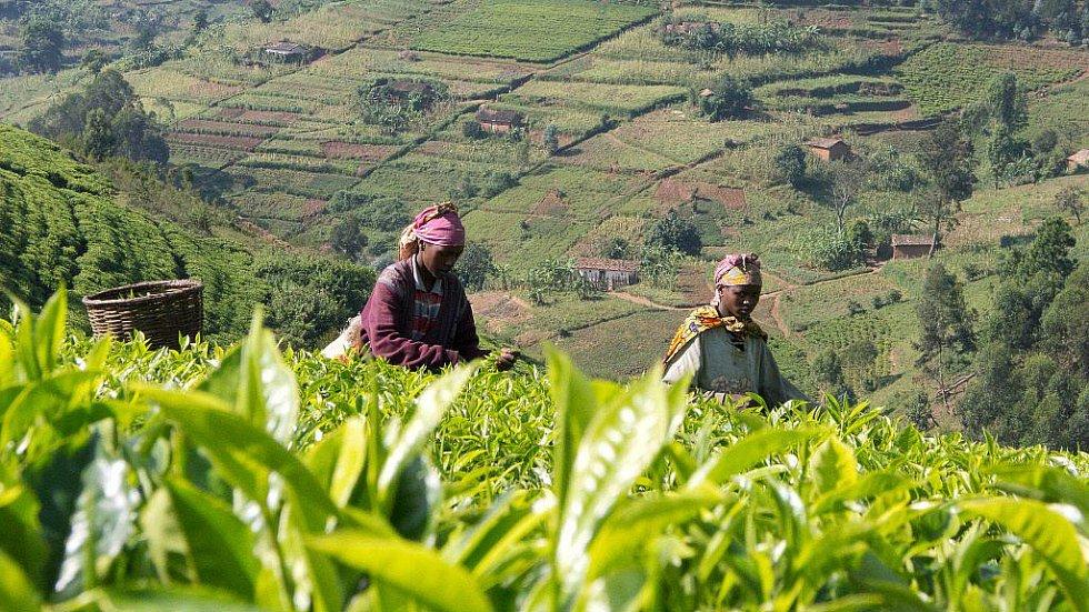 Zábřežský filmař Martin Strouhal natáčel dokumenty v africké Rwandě
