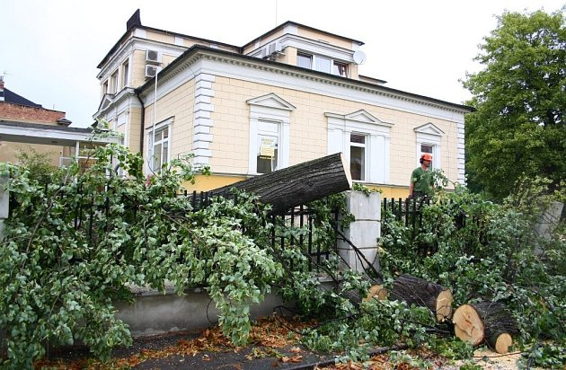 Bouřka s vichřicí povalila v noci z 29. na 30. července mohutnou lípu na Americké ulici Šumperku. Padající kmen zničil plot a spadl na zaparkovaná auta.