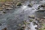 Stav v řece Březné v sobotu 19. listopadu 2011 dopoledne