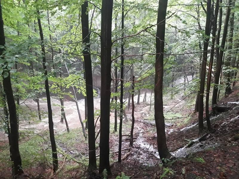 Povodeň v Bělé pod Pradědem zničila množství lesních cest.