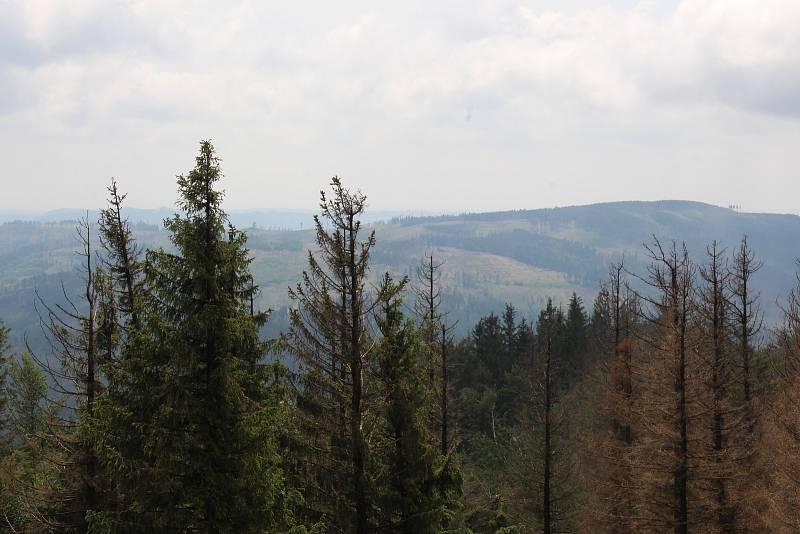 Pohled z Biskupské kupy směrem na Bruntál.