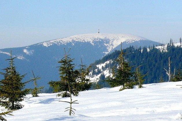 Pohled na Králický Sněžník zhory Slamník po výstavbě rozhledny.