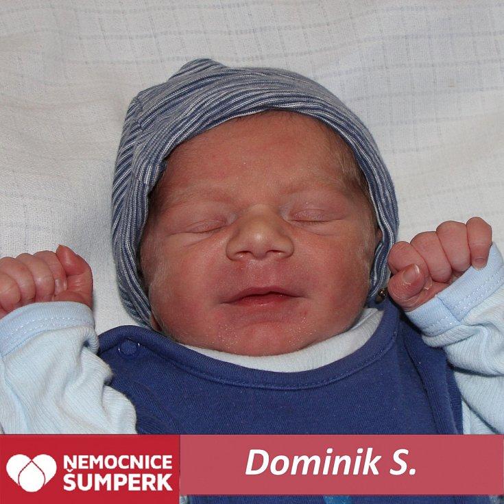 Dominik S., Nový Malín