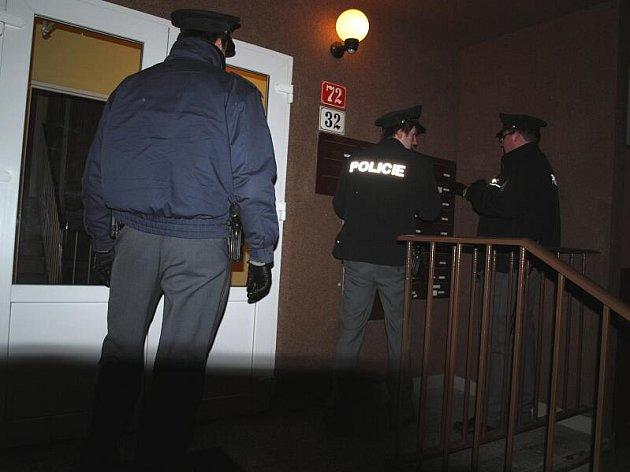 Policisté na kontrolní akci