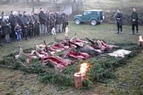 Myslivci z Mysliveckého sdružení Brníčko – Strupšín při výřadu ulovené zvěře. Na jednom honu se jim podařilo skolit deset divočáků.