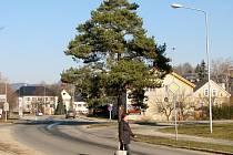 Na křižovatce ulic Temenická a Šumavská vyroste kruhová křižovatka.
